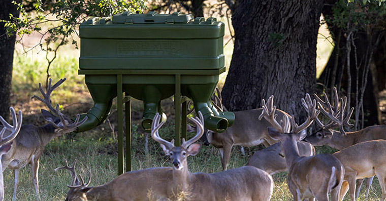 The Benefits of Protein Feeders - Texas Hunter Products