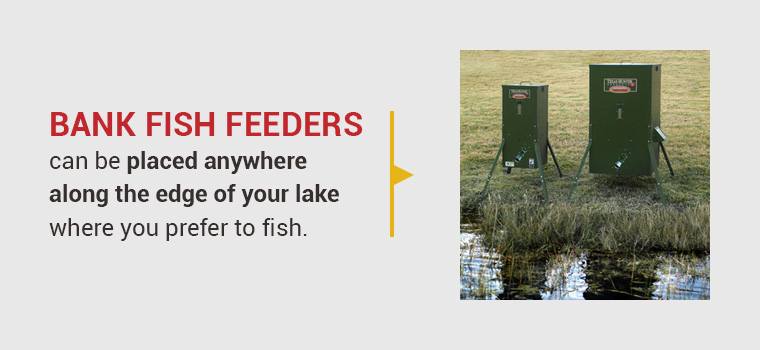 pond-bank-fish-feeders.jpg