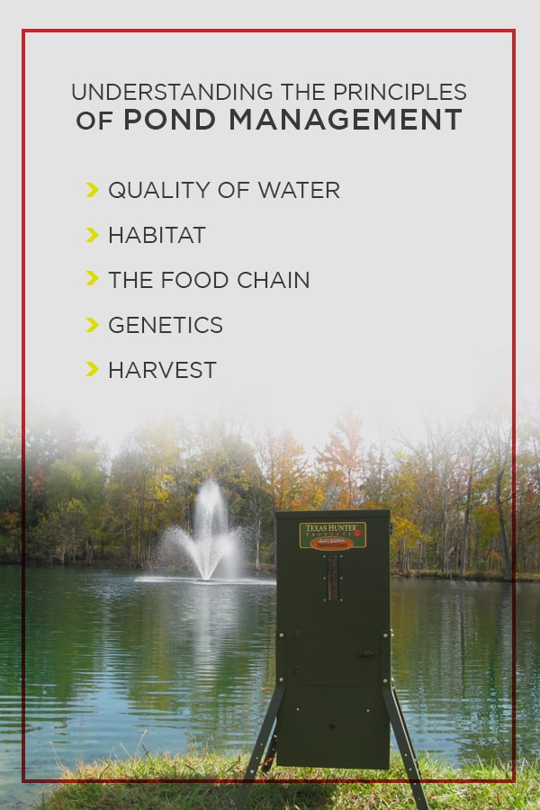Growing Bigger Bass in Your Pond or Lake - Texas Hunter Products