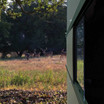 Close-up view of Texas Hunter Hide-A-Way Window System