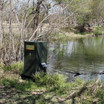 Texas Hunter Lake & Pond Fish Feeder Setup by Lake