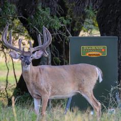 Deer Feeders - Automatic Deer Feeders | Texas Hunter Products