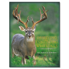 Observing and Evaluating Whitetails by Dave Richards and Al Brothers