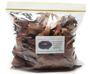 Burrowing Cockroach Food 60g