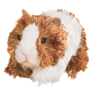Marble Guinea Pig