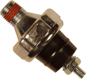 GENERAC OIL PRESSURE SWITCH 10PSI (G060108)