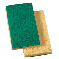 Scrubber/Sponge