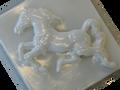 Horse / Caballo