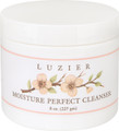 Moisture Perfect Cleanser