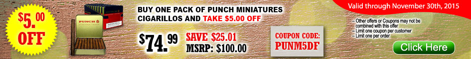 Punch Miniatures