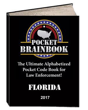 Pocket Brainbook 2017 Edition!