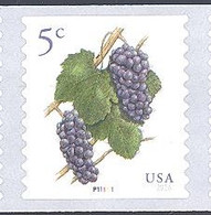 Scott # 5038 Plate # P111111 .05 Grapes - center# 4T black