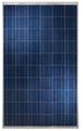 Hanwha 250 Watt Solar Module