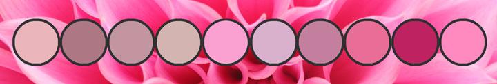 Pink Elastic Hues