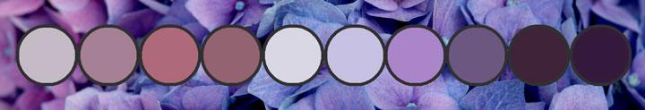 purples1.banner.720.23k.jpg
