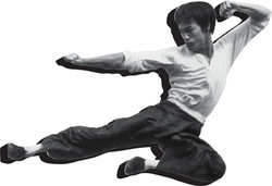 Image for Bruce Lee Fly Magnet