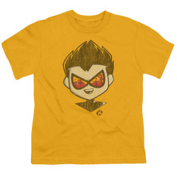 Image for Teen Titans Go! Youth T-Shirt - Go to the Movies Beachy Robin