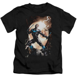 Image for Batman Kids T-Shirt - Nightwing Against Owls