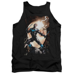 Image for Batman Tank Top - Nightwing Against Owls