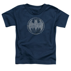 Image for Batman Toddler T-Shirt - Starry Night Shield