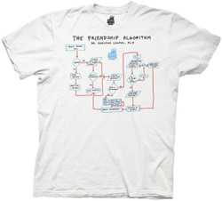 Image for Big Bang Theory T-Shirt - the Friendship Algorithm