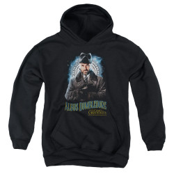 Image for Fantastic Beasts: the Crimes of Grindelwald Youth Hoodie - Dumbledore