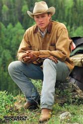 Image for Brokeback Mountain Poster - Heath