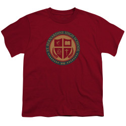 Image for American Vandal Youth T-Shirt - St. Bernardine Seal