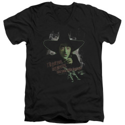 Image for The Wizard of Oz V Neck T-Shirt - You and Your Little Dog Toto Too