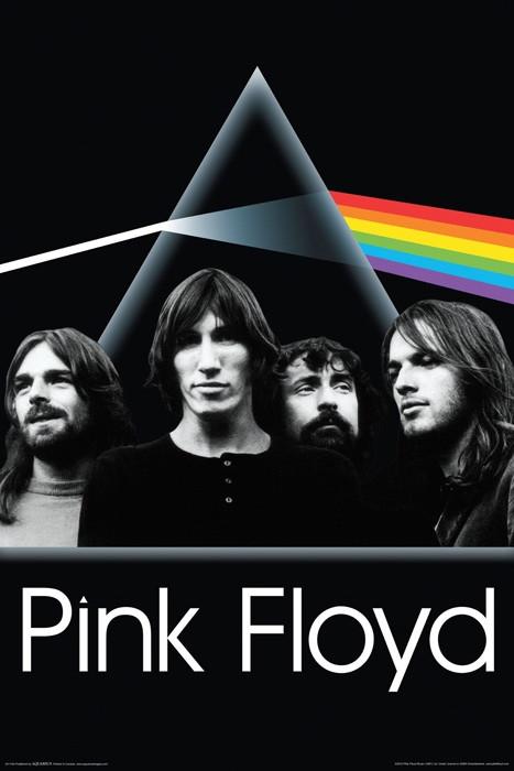 Pink Floyd Poster Dark Side Group Nerdkungfu