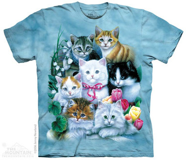 Image for The Mountain T-Shirt - Kittens