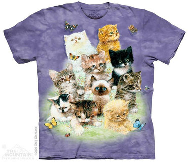 Image for The Mountain T-Shirt - 10 Kittens