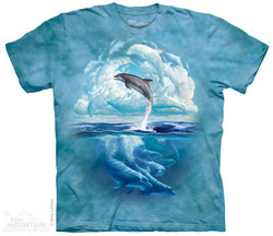 Image for The Mountain T-Shirt - Dolphin Sky