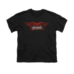 Image for Aerosmith Youth T-Shirt - Winged Logo