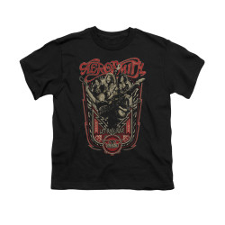 Image for Aerosmith Youth T-Shirt - Let Rock Rule