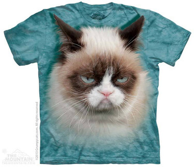 Image for The Mountain T-Shirt - Grumpy Cat