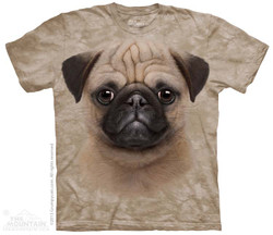 Image for The Mountain T-Shirt - Pug Puppy
