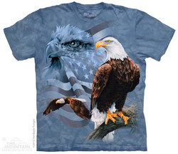 Image for The Mountain T-Shirt - Faded Flag & Eagles