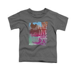 Image for Woodstock Toddler T-Shirt - Peace Love Music