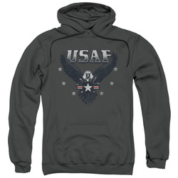 Image for U.S. Air Force Hoodie - Incoming