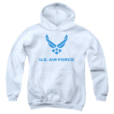 Image for U.S. Air Force Youth Hoodie - Distressed Logo