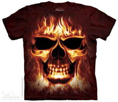 Image for The Mountain T-Shirt - Skulfire