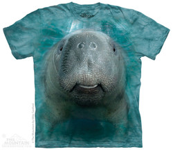 Image for The Mountain T-Shirt - BF Manatee