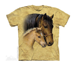 Image for The Mountain Youth T-Shirt - Gentle Touch