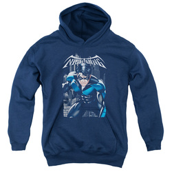 Image for Batman Youth Hoodie - Nightwing Legacy