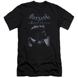 Image for Batman Arkham Origins Premium Canvas Premium Shirt - Perched Cat