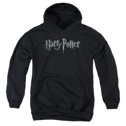 Image for Harry Potter Youth Hoodie - Classic Logo