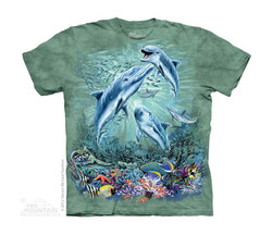 Image for The Mountain Youth T-Shirt - Find 12 Dolphins