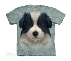 Image for The Mountain Youth T-Shirt - Border Collie Puppy