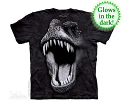 Image for The Mountain Youth T-Shirt - Big Face Glow Rex